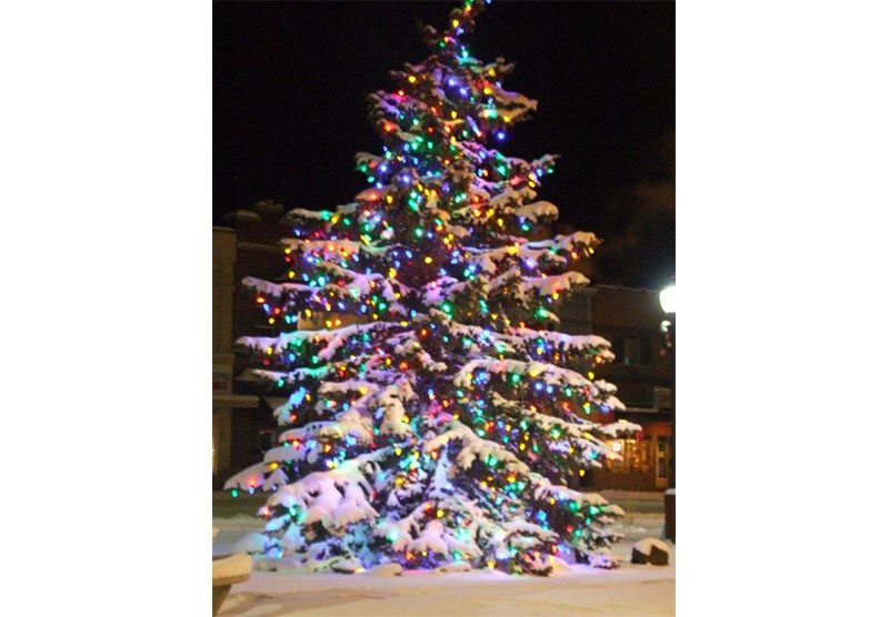 treelighting4.jpg